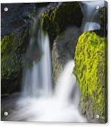 Twin Cascades Acrylic Print
