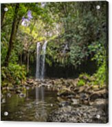 Twin Falls, Maui Acrylic Print