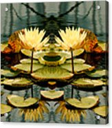 Twin Pond Lillies Acrylic Print