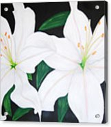Twin White Lillies Acrylic Print