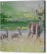 Twins In The Quabin Acrylic Print