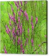 Twisty Flowers Acrylic Print