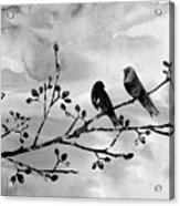 Two Birds-black Acrylic Print