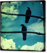 Two Crows Blue Lomo Sky Acrylic Print