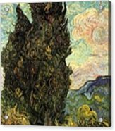 Two Cypresses Acrylic Print