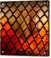 Two Handfuls Of Oranges Acrylic Print