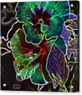 Two Hibiscus Glowing Edges Abstract Acrylic Print