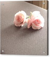 Two Little Pink Roses Acrylic Print