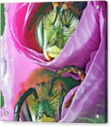 Two Metallic Green Bees Rolled Up In A Pink Flowers Petals Acrylic Print