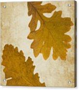 Two Oak Leaves  Acrylic Print