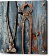 Two Old Rusty Pliers Acrylic Print