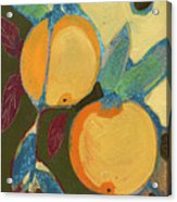 Two Oranges Acrylic Print