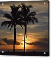 Two Palms At Dawn 18222 Acrylic Print