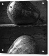 Two Ripe Pears In Black And White Acrylic Print