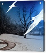 Two Seagulls Fly Together In The Clear Blue Sky Acrylic Print by Fernando Cruz