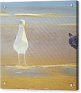 Two Seagulls Wondering Where The Chips Have Gone Acrylic Print