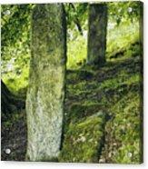 Two Standing Stones Acrylic Print