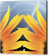 Two Sunflower Lightning Storm Acrylic Print