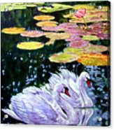 Two Swans In The Lilies Acrylic Print