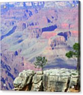Two Tree Rock Acrylic Print