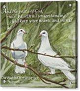 Two White Doves Philippians Acrylic Print