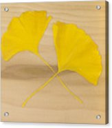 Two Yellow Leaves Acrylic Print