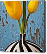 Two Yellow Tulips Acrylic Print by Garry Gay