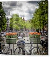Typical Amsterdam Acrylic Print