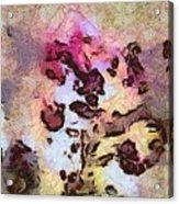 Typocosmy Layout  Id 16098-054729-96560 Acrylic Print