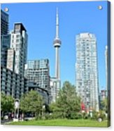 Toronto Towers From The Park Acrylic Print