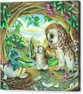 Ugly Duckling - Dragon Baby And Owls Acrylic Print