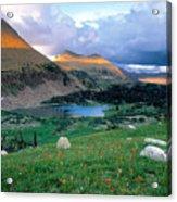 Uinta Wilderness Acrylic Print