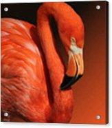 Ultimate Orange Acrylic Print