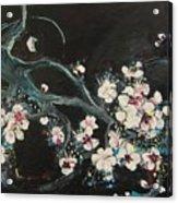 Ume Blossoms2 Acrylic Print
