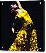 Un Momento Intenso Del Flamenco Acrylic Print