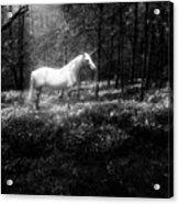 Under A Moonlit Sky  #fantasy #unicorn Acrylic Print