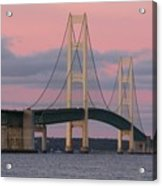Under A Rose Colored Sky Acrylic Print