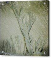 Under A Seashell Moon Acrylic Print