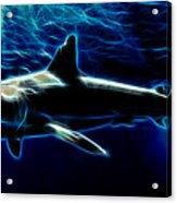 Under Blue Sea Acrylic Print