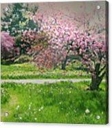 Under The Cherry Tree Acrylic Print