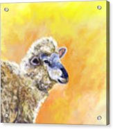 Under The Lemon Sky Acrylic Print