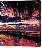 Under The Palms Sunrise Acrylic Print
