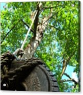 Under The Tire Swing Acrylic Print