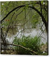 Under The Wild Wood Arch Acrylic Print