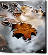 Under Water Fall Acrylic Print