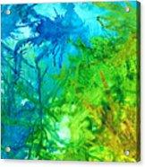 Undersea Corals Acrylic Print