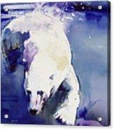 Underwater Bear Acrylic Print
