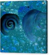 Underwater Eye Acrylic Print