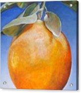 Une Orange Acrylic Print