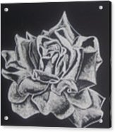 Unfold Acrylic Print